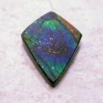 ammolite-lcs0049