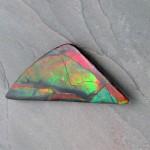 ammolite-lcs0060-v2