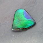 ammolite-lcs0069-v2